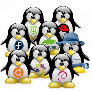 Profesjonalny Linux